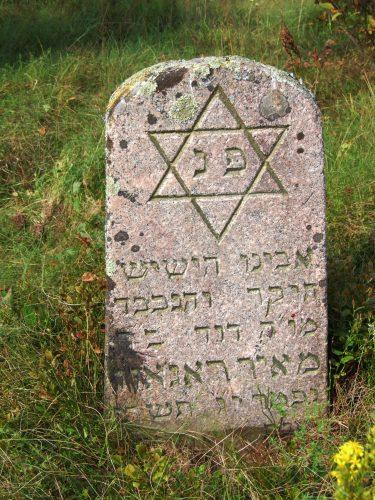 Еврейское кладбище, местечко Городок, Молодечненский район